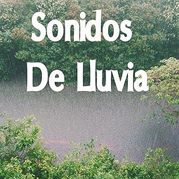 18 Pistas Musicales De Naturaleza Tranquila Y Sonidos De Lluvia Relajantes
