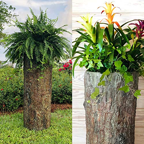 Bushy Box Large Hollow Log Planter. Outdoor Garden, Yard & Porch Pot. Tall Tree Stump Well Pump Cover. Weatherproof, Rustic, Natural Looking Deck & Patio Decor. Better Than a Fake Rock.