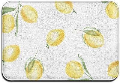 Home Door Mat Yellow Lemon Doormat Door Mats Entrance Rugs Anti Slip 4060 for Indoor Outdoor