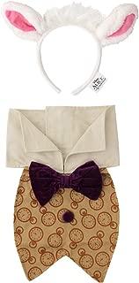 elope Disney Alice in Wonderland White Rabbit Kit