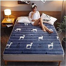 Tatami Mattress, Keep Warm in Winter Tatami Warm Thick Bedroom Mattress Student Single Double Dormitory Thickness 3 cm,F,1...