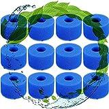 CXYXHW Wiederverwendbar,für Filter Whirlpool Filter Lazy Spa Filter,Pool Spa Ersatzteile,für Filterschwamm für Intex Typ S1 (12 pcs)