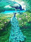 Lovmo Pavo Real Juego de Pintura de Diamantes para Adultos y niños, Regalo de decoración de la Pared del hogar Pintura de Diamante con Bordado de Diamantes Completo (Cuadrado 3(Cuadrado 30 * 40 cm)