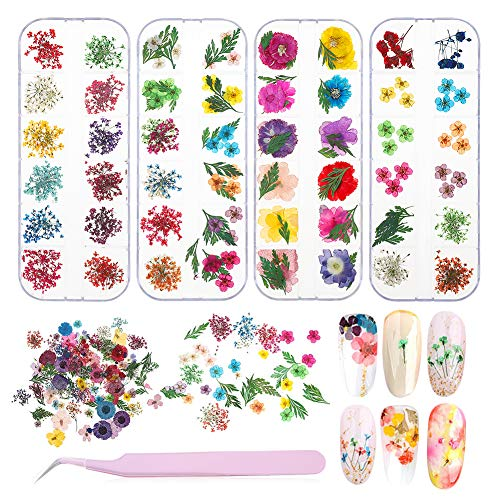 4 Boxes Nail Dried Flowers, BOSIXTY 48 Colors 3D