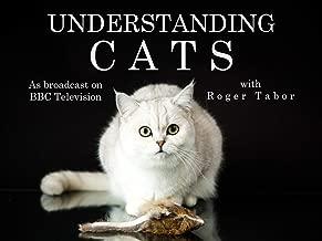 Best breaking bad cat habits Reviews