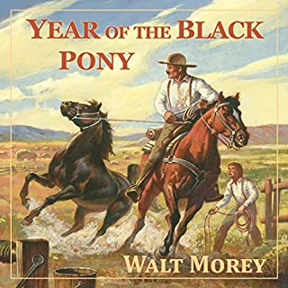 Year of the Black Pony (Living History Library) cover art