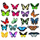 ManYee 40 Pieces Large Size Butterfly Window Clings Anti-Collision Window Decals Window Clings for Glass Windows Butterfly Stickers Cling Decor