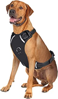 GAUTERF Adjustable Reflective Breathable Oxford Soft Dog Vest Harness with Front & Back 2 Leash Attachments and Easy Control Handle Vest Outdoor Harness fit Small Medium Large Dogs