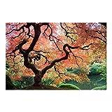 Fototapete Wald - Japanischer Garten - Vliestapete Breit, Größe HxB: 225cm x 336cm