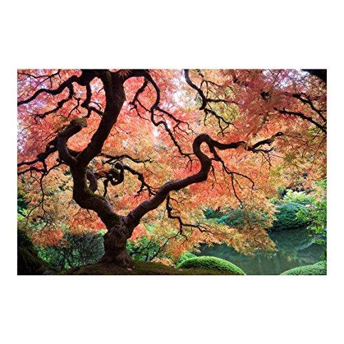 Fotomural - Top fondo de pantalla Bosque - Mural apaisado papel pintado fotomurales murales pared papel para pared foto 3D mural pared barato decorativo Dimension: 290 x 432 cm; Motivo: jardín japonés