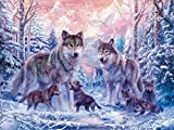 Fipart 5D DIY Peinture Diamant Point De Croix Kit D'artisanat ,Salon Stickers Muraux Décor à La Maison(14X16inch/35X40CM) loups
