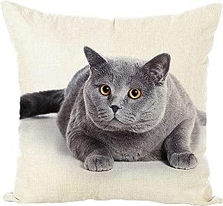 HAIWEN Lifelike Cute Cat Cotton Linen Square Decorative Throw Pillow Case Cushion Cover for Sofa Couch Home Decor Design,18 x 18 Inch(Animal 3D Cat02)