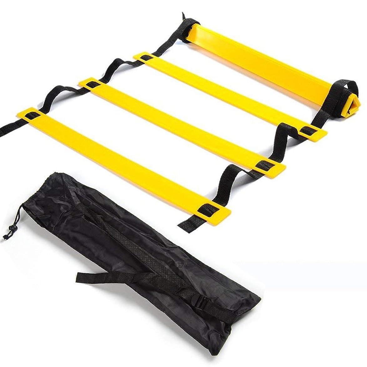 拮抗するプランテーション文字通りトレーニングラダー PKDREAMER 連結可能 スピードラダー 野球 サッカー テニス 練習 調節可能 敏捷性 瞬発力 柔軟性 アップ 収納袋付き