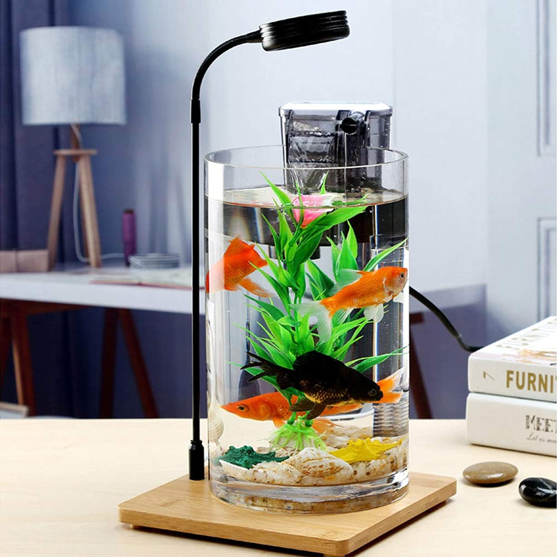 Aquarium gold Fish Tank Small Creative Glass Office Mini Desktop Living Room Round Eco Lazy Free Water goldfish Tank30cm
