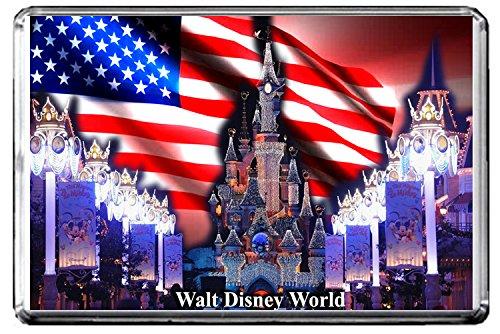 C395 WALT DISNEY WORLD FRIDGE MAGNET USA TRAVEL PHOTO MAGNETICA CALAMITA FRIGO
