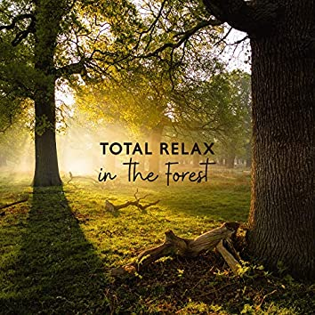 Total Relax in the Forest: Nature New Age Music Compilation for Relax, Soft Sounds of Forest, Songs for Rest, Calm Nerves, Vital Energy Regeneration