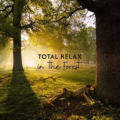 Calming Music Sanctuary & Calming Sounds
