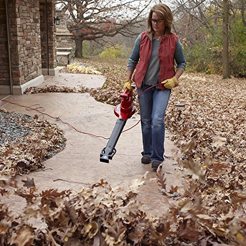 Yard Vacuum for Acorns