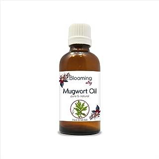 Best artemisia vulgaris oil Reviews