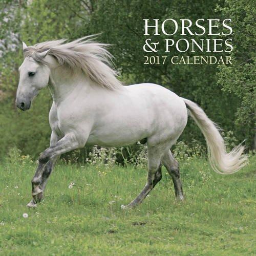 2017 Calendar: Horses & Ponies