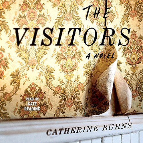 The Visitors audiobook cover art