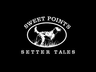 Sweet Point's Setter Tales