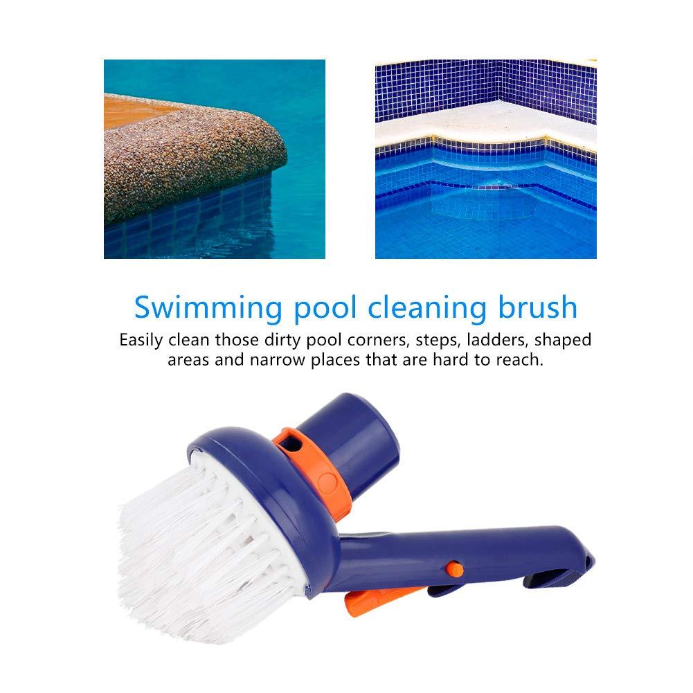 Cepillo de piscina, cerdas de nylon Cepillo de vacío de esquina de paso Diseño elegante Cerdas fuertes Cepillos de limpieza, limpia esquinas Escalones, escaleras para piscinas, spa y bañera de hidromasaje: Amazon.es: