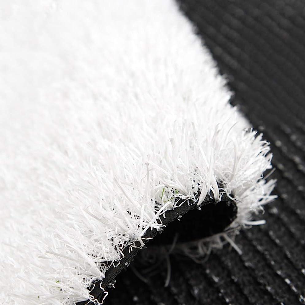 ベリー自分の面積人工芝 ホワイトシミュレート芝生、30ミリメートル厚人工プラスチックフットボールフィールドホワイトライン偽ターフ屋外モーションカーペット幼稚園結婚式の装飾カーペット (Size : 2 m X 0.5 m)