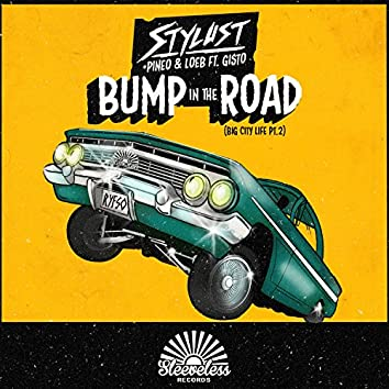 Bump in the Road