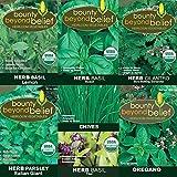 """Herb Collection"" Heirloom Vegetable Garden Seeds - 8 Bonus - Non-GMO- Gardening eBooks - Open Pollinated - Basil, Cilantro, Chives, Oregano, Parsley"