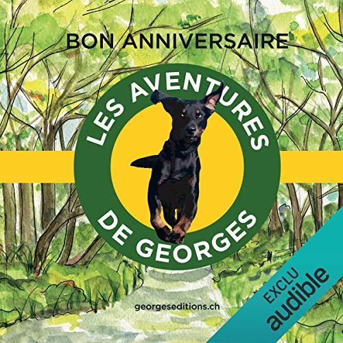 Bon anniversaire (Les aventures de Georges) cover art