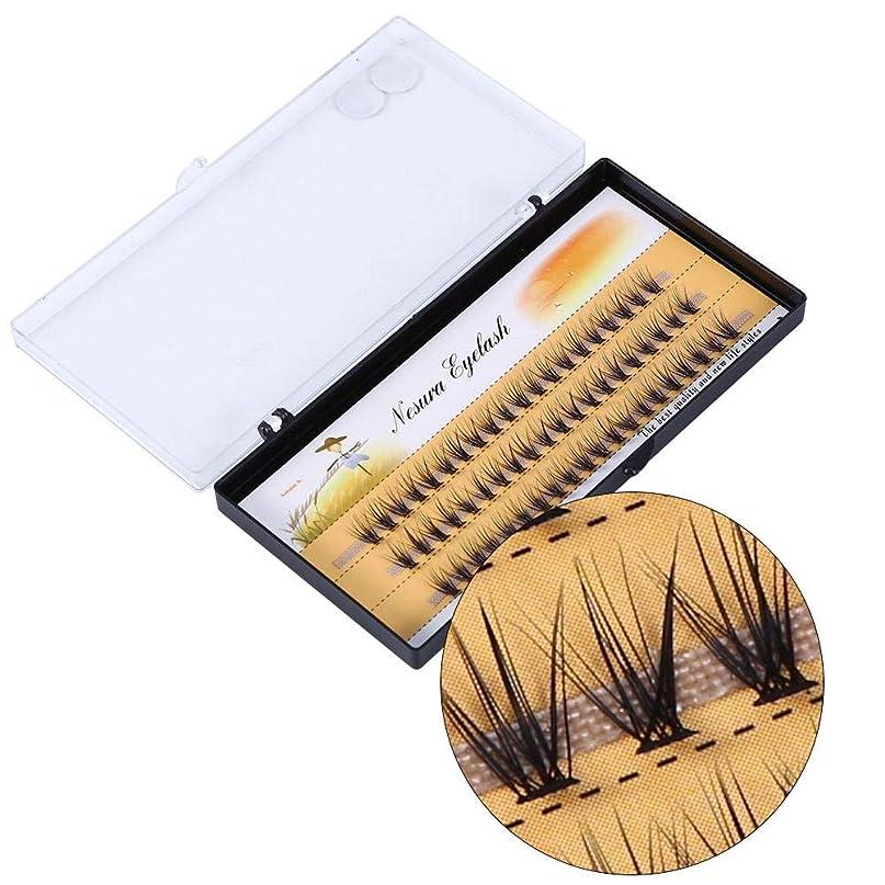 五グレーサービス偽のまつげ、偽のまつげ、柔らかい自然の拡張、偽のまつげの手作りの長い睫毛のメイクアップの美しさ (12mm)