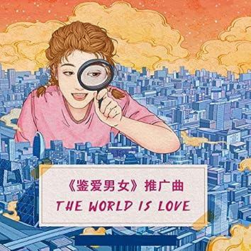 The World is love (《鑒愛男女》 推廣曲)