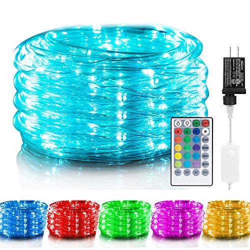Color Changing Rope Lights: 33 Ft 100 LED Outdoor String Lights with Plug & Remote | Twinkle Lights for Bedroom Wedding Patio Garden Christmas Decor |...