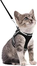 rabbitgoo Cat Harness and Leash Set for Walking Escape Proof, Adjustable Soft Kittens Vest with Reflective Strip for Extra...