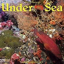 Under the Sea 2019 Wall Calendar