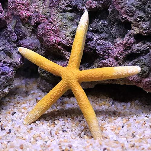 Danmu 1Pc of Polyresin Coral Ornaments, Aquarium Coral Decor, Starfish Decor for Fish Tank Aquarium Decoration 4 7/10' Dia