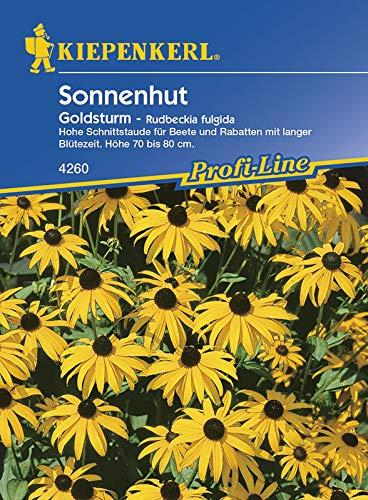 Kiepenkerl 4260 Sonnenhut Goldsturm (Sonnenhutsamen)