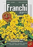 Franchi Sementi DBFS308-1 Pantoffelblume Pioggia D'Oro (Pantoffelblumensamen)