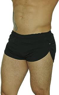 mens dolphin shorts
