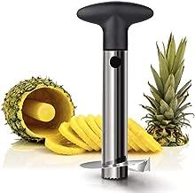 Hemiza Zamkar Trades Stainless Steel Pineapple Cutter/Peeler Fruit/Slicer