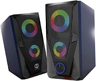Raider Gaming speaker