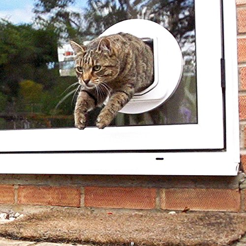 SureFlap Dual Scan Microchip Cat Flap, White