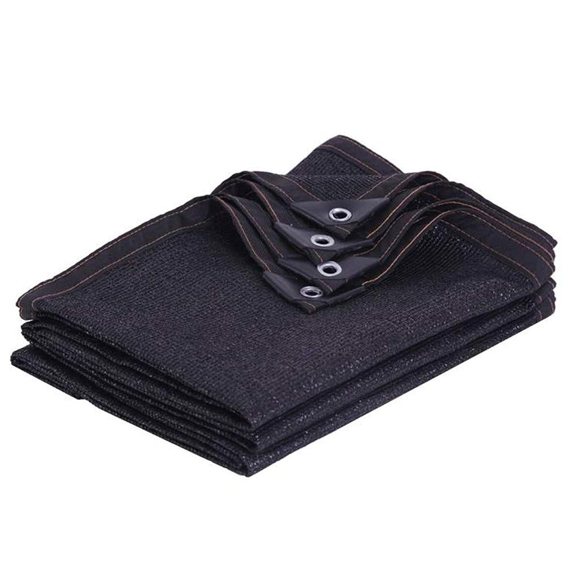 不利益ペッカディロ落ち着いたWZHIJUN オーニングシェード遮光ネット 黒 95% シェーディング率 老化防止 屋外の 温室 パティオ バルコニー シェーディングネット 23サイズ (Color : Black, Size : 2×4m)