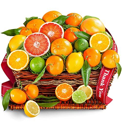 Golden State Fruit Thank You Sweet Sunshine Citrus Fruit Gift Basket