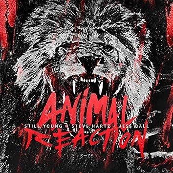 Animal Reaction