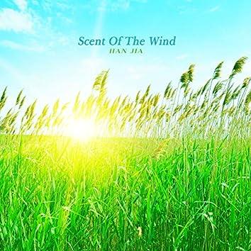 바람의 향기