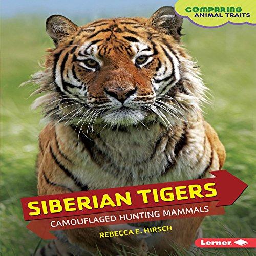 Siberian Tigers copertina