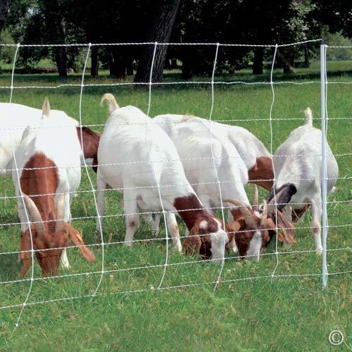 Premier ElectroStop Goat & Sheep Electric Fence, 42'H x 164' L, Single Spike, White - Premier Top...