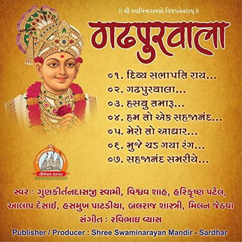 Vishwa Shah, Harikrishna Patel, Alap Desai, Hasmukh Patadiya, Gunkirtandasji Swami & Milan Jethva